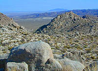 Anza Borrego South