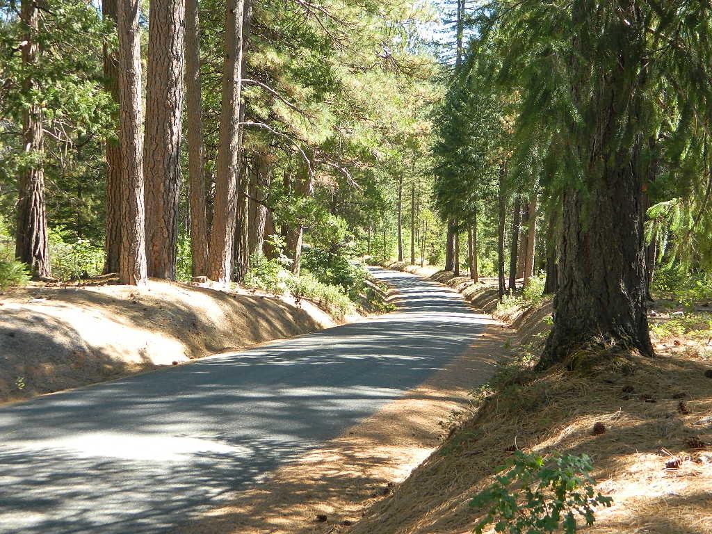Back Road NB