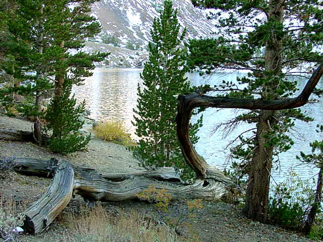 Lake Virginia 2000