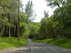 gravelroads