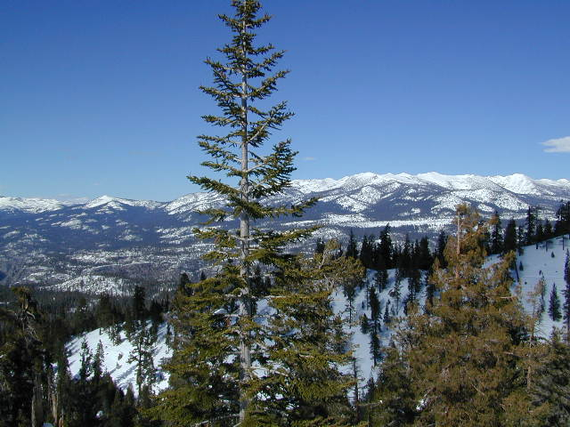 Mono Divide in Mid-Winter