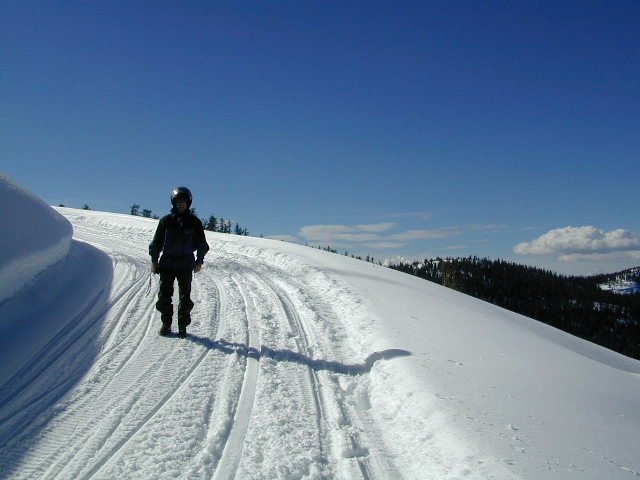sierra snow pano