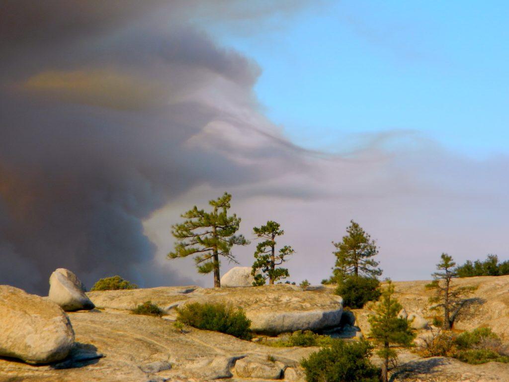 wildfire dangers